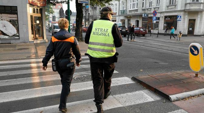 Studium obywatelskie: Straż Miejska Poznania a sprawa parkowania